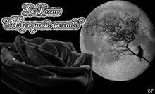 la luna, mi pequeño mundo